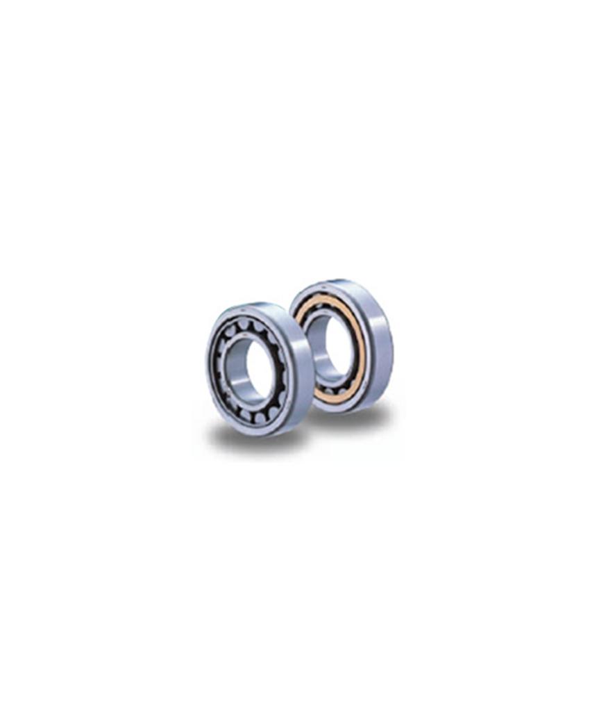 EW/EM Series Cylindrical Bearing